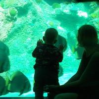 Zack and Fish